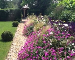 Perennials and Grasses in Summer